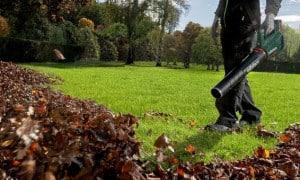 Aspirateur et souffleur de feuilles sans fil professionnel pour jardin